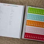 A Shiny New Planner & Road Trip Tips