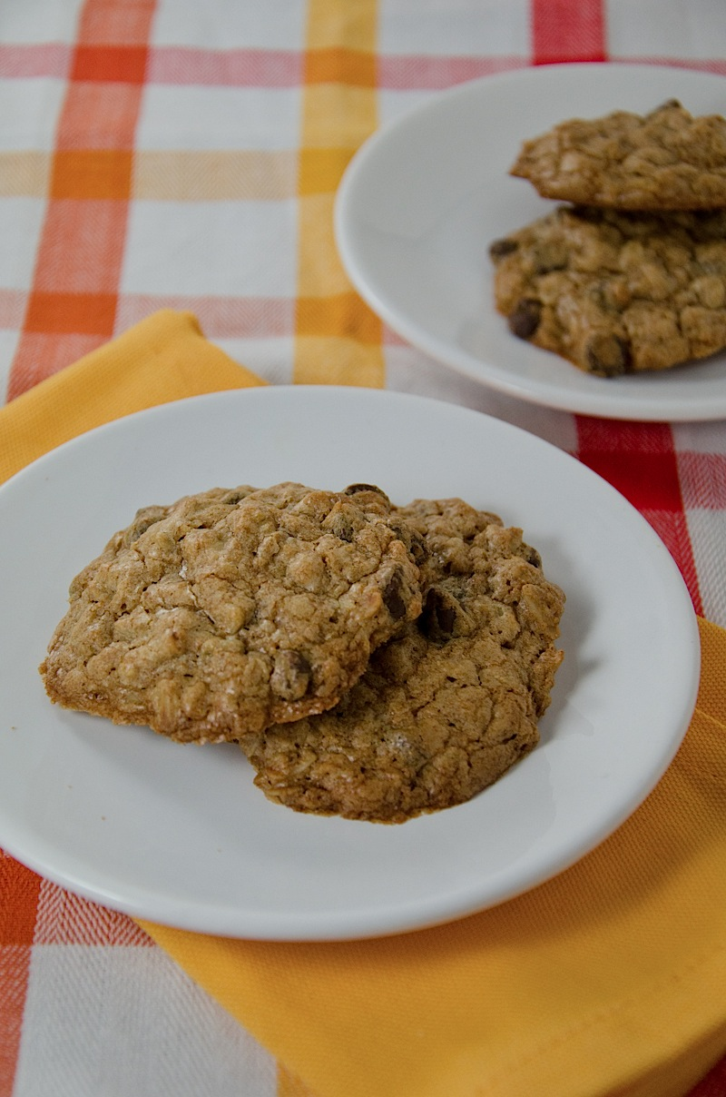 Emergency Chocolate Chip Cookies {Recipe}