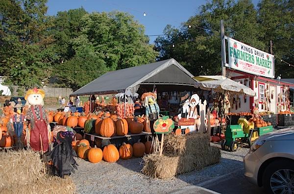 Pumpkins-7323.jpg