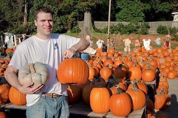 Pumpkins-7329.jpg