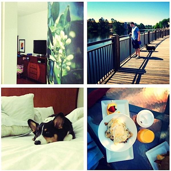 HotelIndigoFL.png