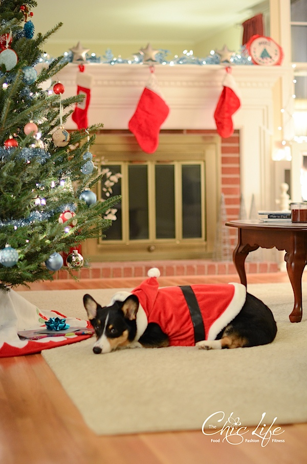 Christmas2013-0496.jpg