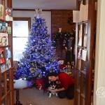 Christmas2013-0769.jpg