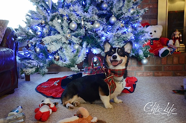 Christmas2013-0864.jpg
