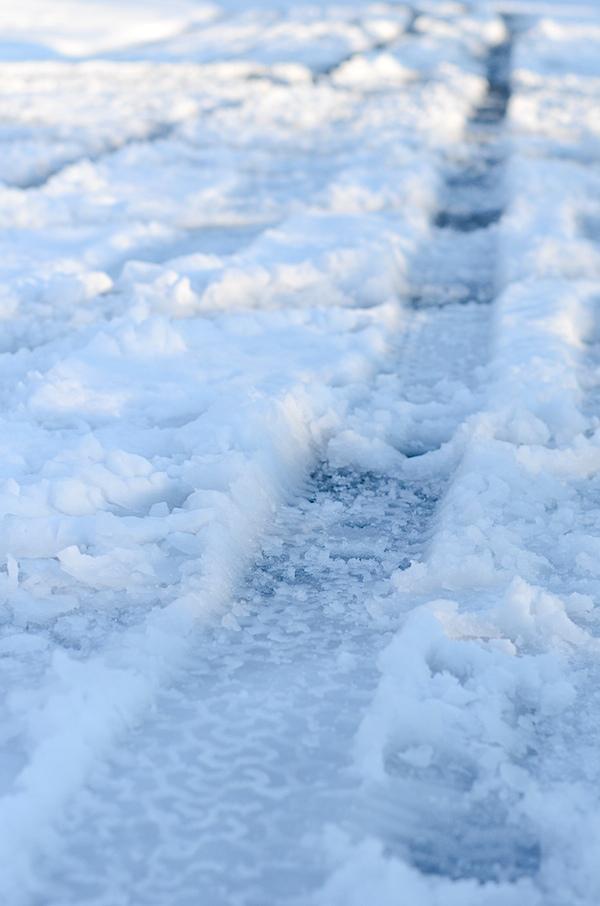 SnowedIn-2129.jpg