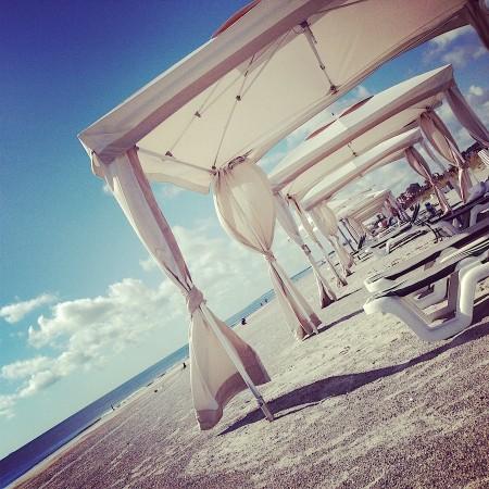 OmniAmeliaIsland_Beach.jpg
