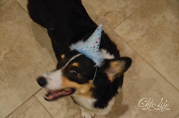 Bailey's Birthday 2014