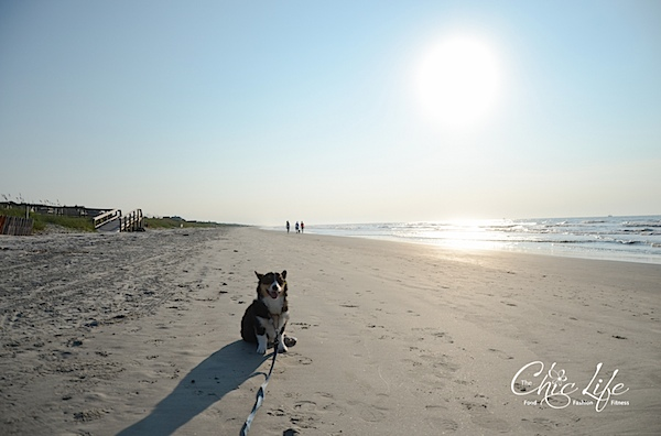 Kiawah Island Birthday Beach Weekend {Day 3}