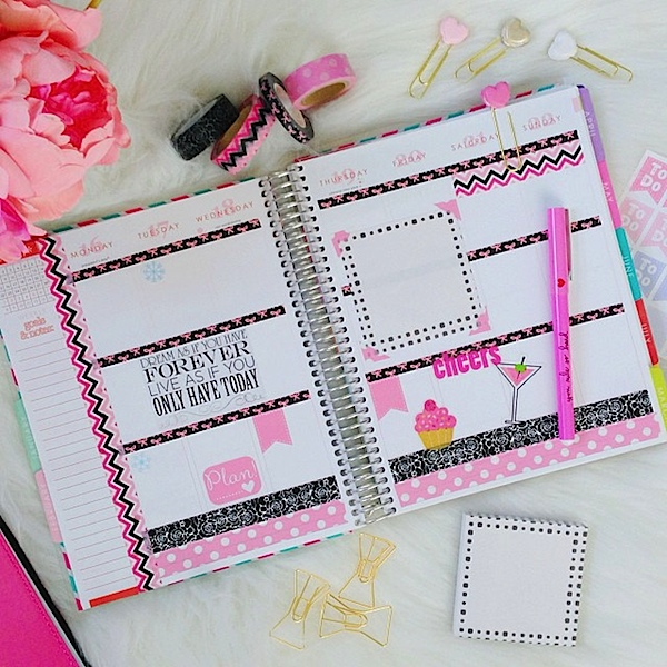 Planner Decoration Ideas: February 2015 (Erin Condren