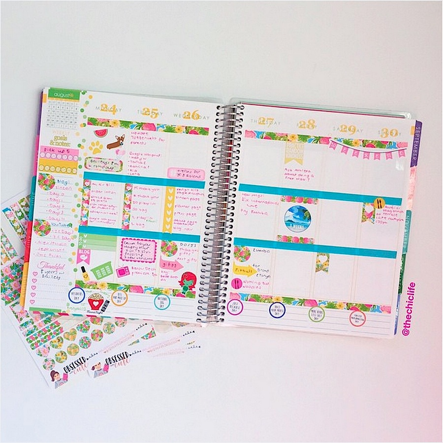 Planner Decoration Ideas August 2015 Erin Condren