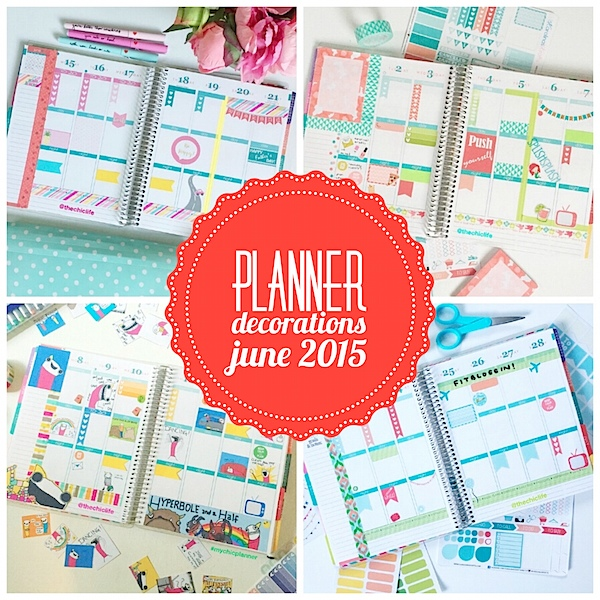 Planner Decoration Ideas: June 2015 (Erin Condren Vertical)
