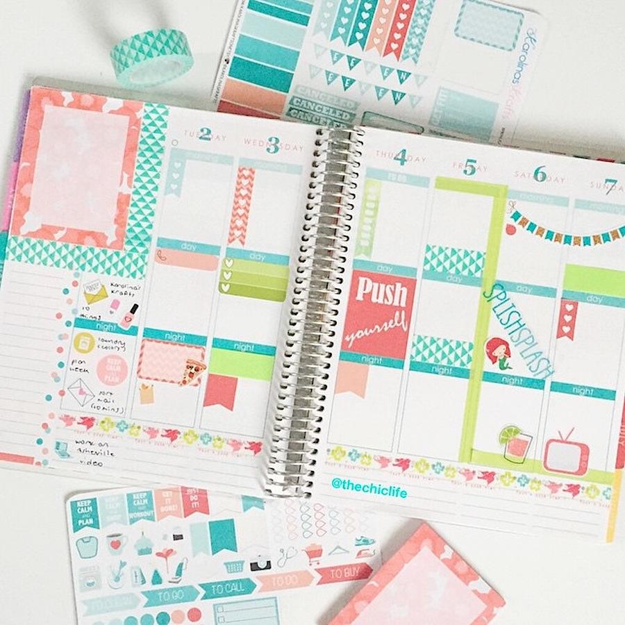 Planner Decoration Ideas June 2015 Erin Condren Vertical The