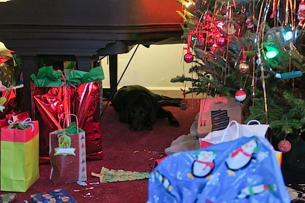 Christmas in Durham 2016
