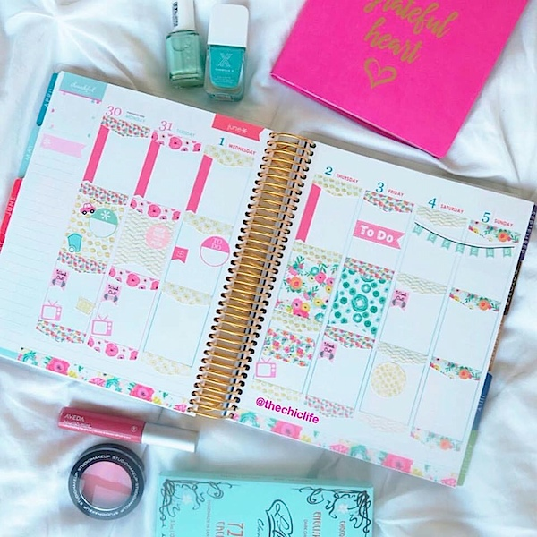 Planner Decorations June 2016 (Erin Condren Vertical)