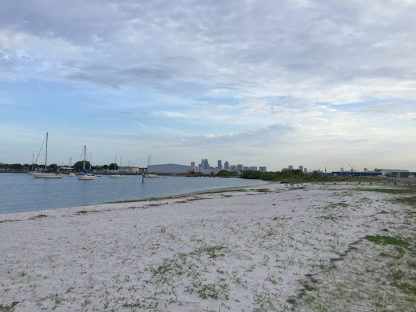 Sisters in Tampa: Day 4 (Biking Morning and Travel Day)