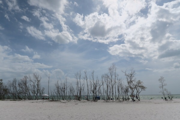 Sisters in Tampa: Day 1 (Karma, Daily Eats, and Fort De Soto Beach)