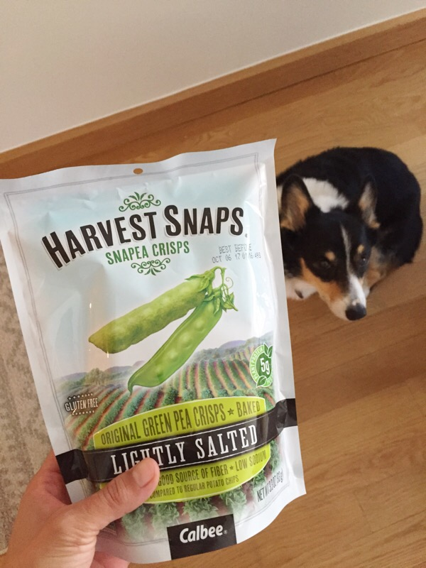 Feeling Snacky {What I Ate Wednesday}