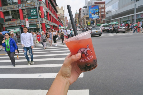 Sis Visits NYC: Boba Guys, Park Party, Westville, and Kulu (Part 2 of 2)