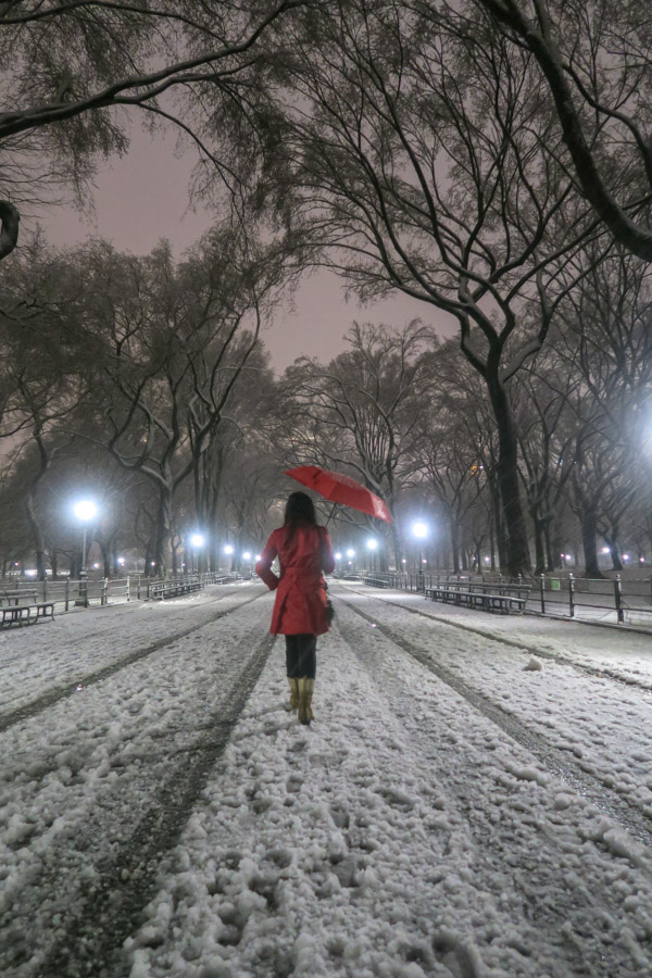 Central Park Snow and the Red Coat
