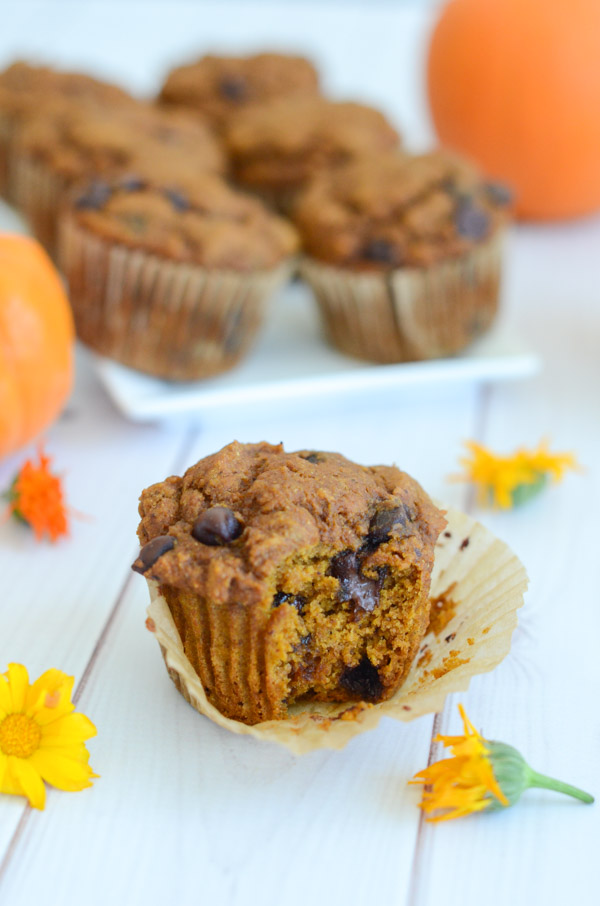 This healthy pumpkin chocolate chip whole grain muffins recipe will be available on my blog soon! Click through for an updated link, which will be added once the recipe is live. #recipe #fallfood #pumpkinrecipe #healthyrecipe #cleaneating
