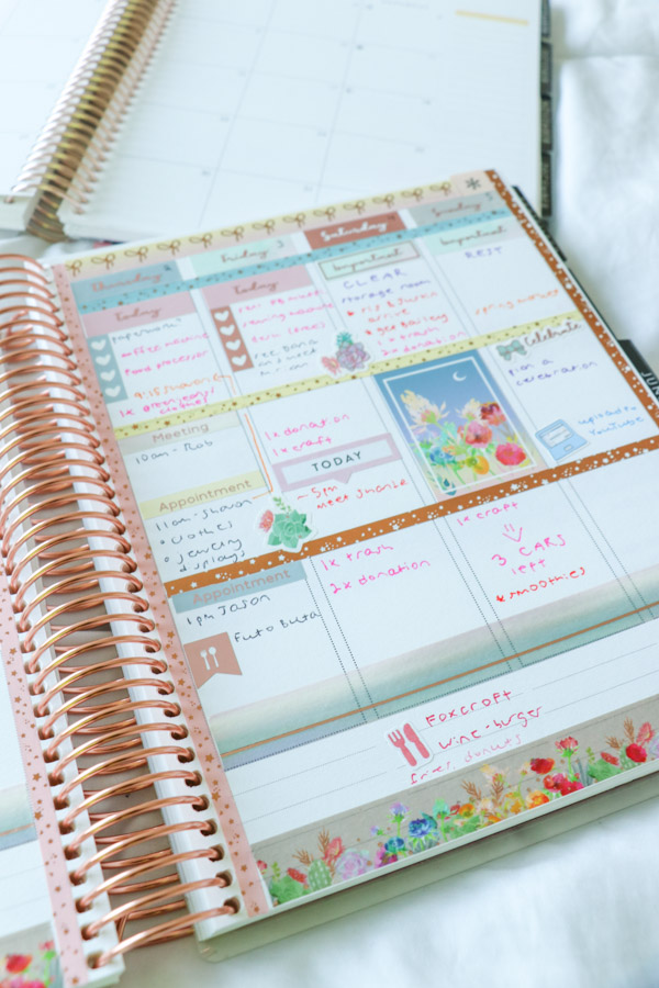 7 Reasons I LOVE the Erin Condren LifePlanner 2019 and